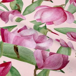 Magnolias from collection...